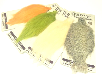Whiting Spey Rooster  Cape
