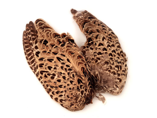 Veniard Hen Pheasant Wing Pair